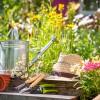Bahçe Salıncağında Guiness Keyfi!