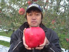 Dünyanın En Ağır Elması